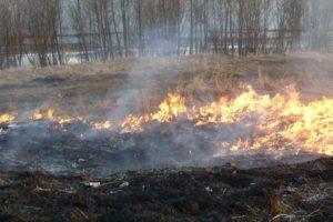 На Кубани сохраняется высший класс пожароопасности